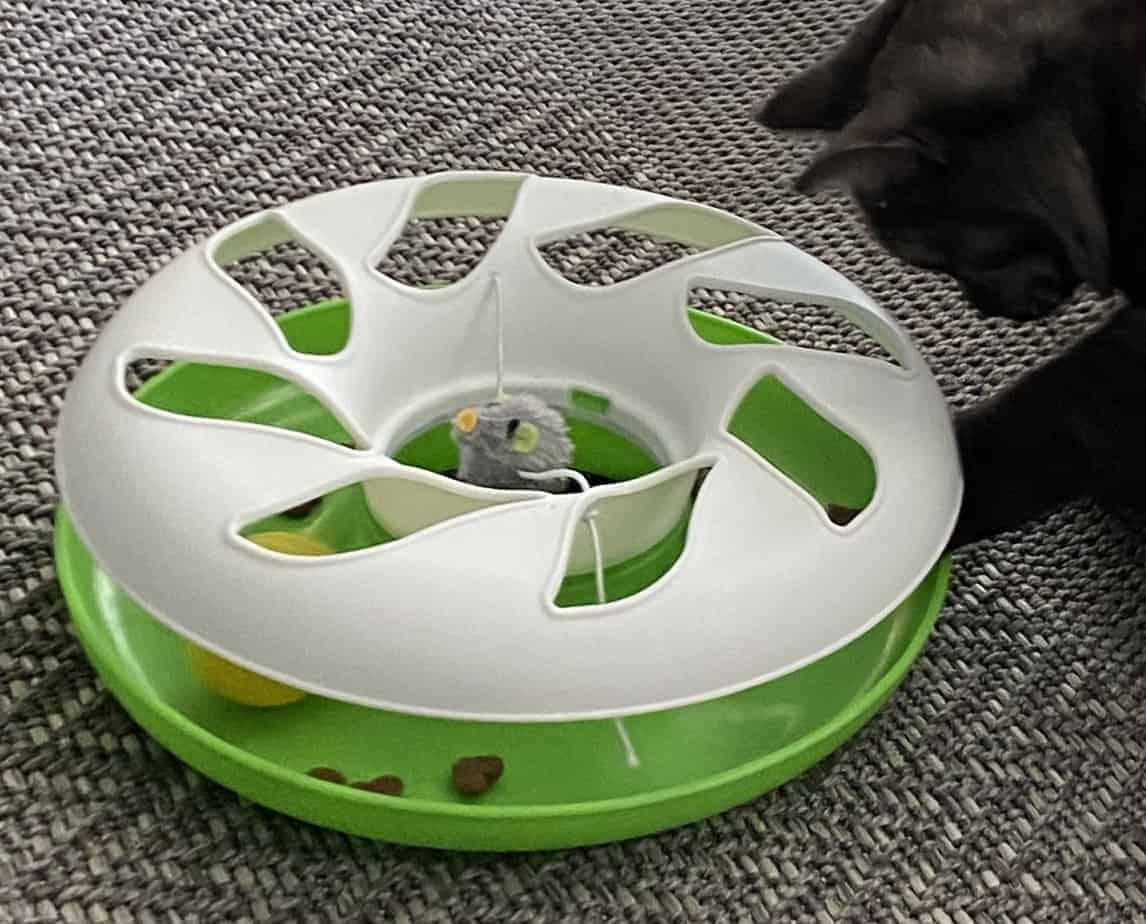 Katzenspielzeug – Kugelbahnspiel