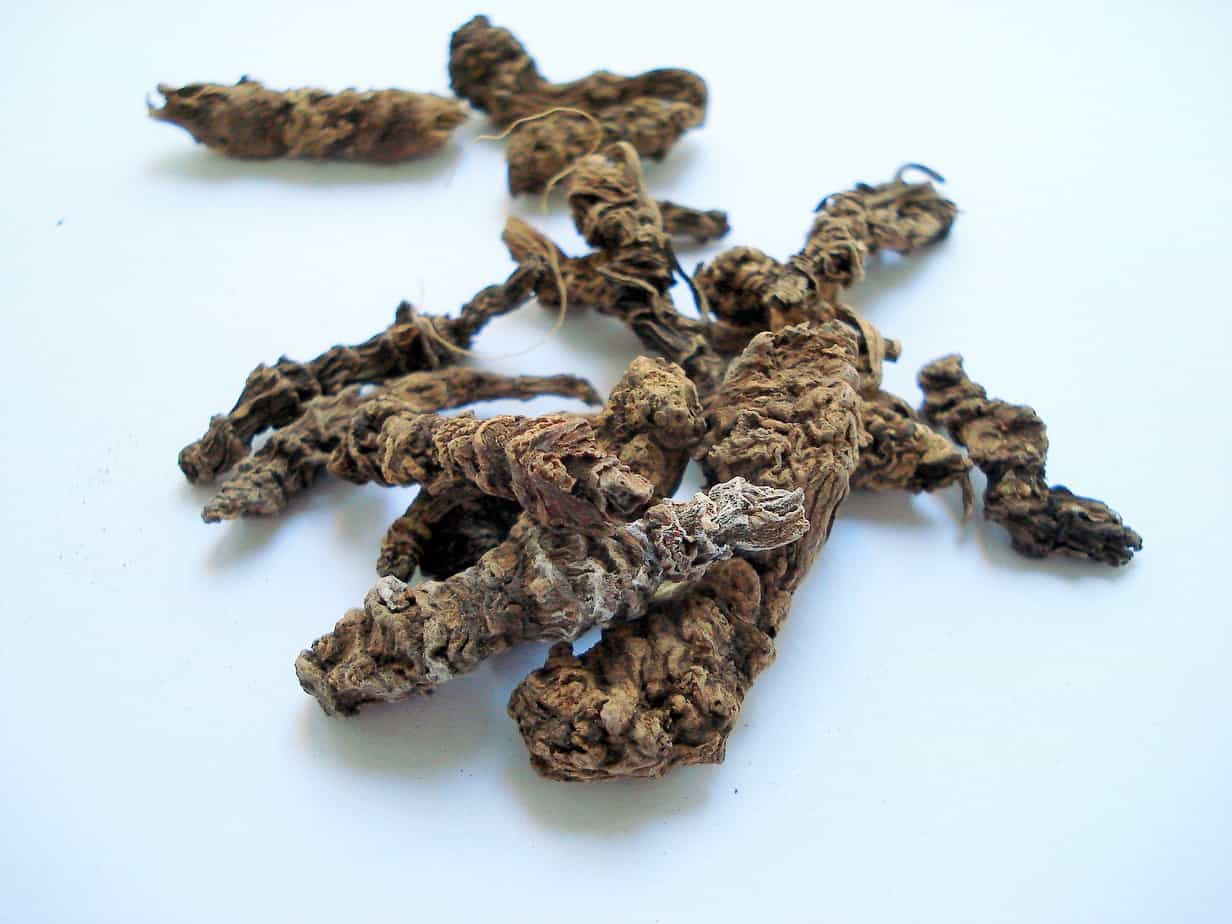 Are Valerian and catnip, bad for cats or can you give them safely? 1